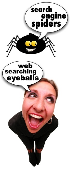 Universal_search_spiders_richcont_3